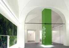 IED Firenze Ambient Design